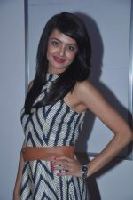 Surveen Chawla at Surveen Chawla hosts screening for film Singh VS Kaur in Sunny Super Sound, Mumbai on 11th Feb 2013 (12).JPG