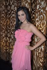 Shilpa Anand celebrate Valentine Day with Akash in Mumbai on 13th Feb 2013 (13).JPG
