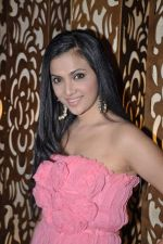 Shilpa Anand celebrate Valentine Day with Akash in Mumbai on 13th Feb 2013 (14).JPG