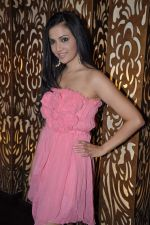 Shilpa Anand celebrate Valentine Day with Akash in Mumbai on 13th Feb 2013 (15).JPG