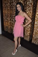 Shilpa Anand celebrate Valentine Day with Akash in Mumbai on 13th Feb 2013 (16).JPG