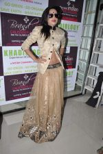 at  Khadilogy launch in Mumbai on 13th Feb 2013 (16).JPG