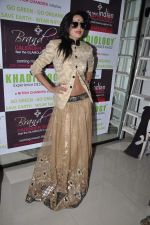 at  Khadilogy launch in Mumbai on 13th Feb 2013 (17).JPG