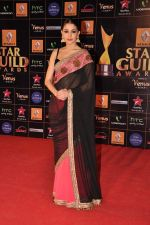 Anushka Sharma at Star Guild Awards red carpet in Mumbai on 16th Feb 2013 (150).JPG