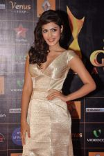 at Star Guild Awards red carpet in Mumbai on 16th Feb 2013 (27).JPG