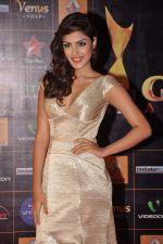 at Star Guild Awards red carpet in Mumbai on 16th Feb 2013 (28).JPG