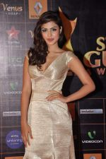 at Star Guild Awards red carpet in Mumbai on 16th Feb 2013 (29).JPG
