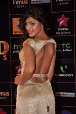 at Star Guild Awards red carpet in Mumbai on 16th Feb 2013 (32).JPG