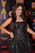 at Star Guild Awards red carpet in Mumbai on 16th Feb 2013 (52).JPG