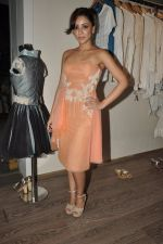 Amrita Puri at Atosa Fashion Preview in Mumbai on 22nd Feb 2013 (19).JPG