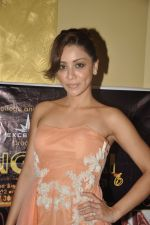 Amrita Puri at Cutting Chai college fest in Mumbai on 22nd Feb 2013 (26).JPG