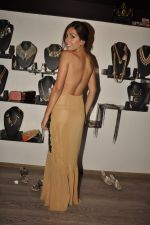 Monica Dogra at Atosa Fashion Preview in Mumbai on 22nd Feb 2013 (39).JPG