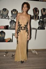 Monica Dogra at Atosa Fashion Preview in Mumbai on 22nd Feb 2013 (41).JPG