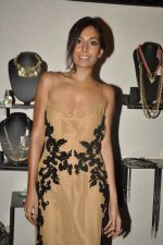Monica Dogra at Atosa Fashion Preview in Mumbai on 22nd Feb 2013 (42).JPG