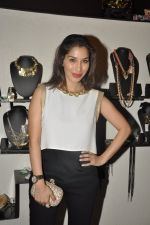 Sophie Chaudhary at Atosa Fashion Preview in Mumbai on 22nd Feb 2013 (61).JPG