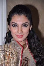 Yukta Mookhey walks for Sadiq memorial society event in Mumbai on 24th Feb 2013 (1).JPG