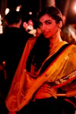Anushka Manchanda at Shonali Nagrani wedding on 26th Feb 2013 (2).JPG