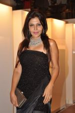Nisha Jamwal at Nisha Jamwal hosts I Casa store launch in Mumbai on 28th Feb 2013 (154).JPG