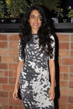 Sarah Jane Dias at the launch of The Daily Restobar in Bandra, Mumbai on 28th Feb 2013 (47).JPG