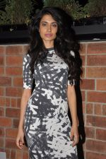 Sarah Jane Dias at the launch of The Daily Restobar in Bandra, Mumbai on 28th Feb 2013 (64).JPG