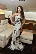 Sudeepa Singh at Nisha Jamwal hosts I Casa store launch in Mumbai on 28th Feb 2013 (126).JPG