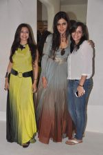 Nisha Jamwal at Sounia Gohil ss13 collection hosted by Nisha Jamwal and Shagun Gupta in Mumbai on 6th March 2013 (171).JPG