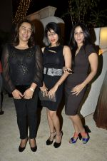at Sounia Gohil ss13 collection hosted by Nisha Jamwal and Shagun Gupta in Mumbai on 6th March 2013 (33).JPG