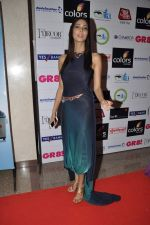 at GR8 women achiever_s awards in Lalit Hotel, Mumbai on 9th March 2013 (40).JPG
