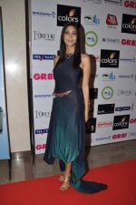 at GR8 women achiever_s awards in Lalit Hotel, Mumbai on 9th March 2013 (41).JPG