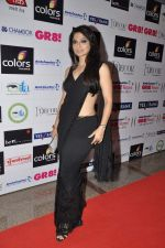 at GR8 women achiever_s awards in Lalit Hotel, Mumbai on 9th March 2013 (75).JPG