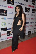 at GR8 women achiever_s awards in Lalit Hotel, Mumbai on 9th March 2013 (76).JPG