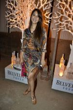 Kim Sharma at India Design Forum hosted by Belvedere Vodka in Bandra, Mumbai on 11th March 2013 (170).JPG