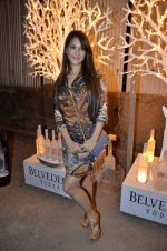Kim Sharma at India Design Forum hosted by Belvedere Vodka in Bandra, Mumbai on 11th March 2013 (155).JPG