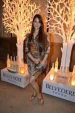 Kim Sharma at India Design Forum hosted by Belvedere Vodka in Bandra, Mumbai on 11th March 2013 (156).JPG