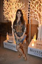 Kim Sharma at India Design Forum hosted by Belvedere Vodka in Bandra, Mumbai on 11th March 2013 (157).JPG