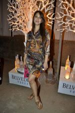 Kim Sharma at India Design Forum hosted by Belvedere Vodka in Bandra, Mumbai on 11th March 2013 (171).JPG