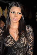 Sherlyn Chopra at MTV Music Awards in Mumbai on 15th March 2013 (66).JPG