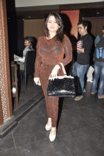 Misti Mukherjee at Manik Soni_s birthday Party and Kallista Spa 1st Anniversary in Mumbai on 16th March 2013 (90).JPG