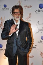 Amitabh Bachchan at the launch of Christian Louboutin store launch in Fort, Mumbai on 20th March 2013 (42).JPG