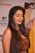 at MTV Video Music Awards 2013 in Mumbai on 21st March 2013 (40).JPG