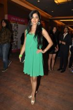 at Manish Malhotra Show at Lakme Fashion Week 2013 Day 1 in Grand Hyatt, Mumbai on 22nd March 2013 (56).JPG