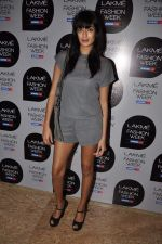 on Day 1 at Lakme Fashion Week 2013 in Grand Hyatt, Mumbai on 22nd March 2013 (151).JPG