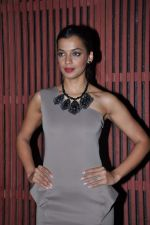 Mugdha Godse at Kangana_s birthday bash in Aurus, Mumbai on 23rd March 2013 (178).JPG