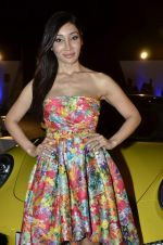 Sofia Hayat at Delna Poonawala fashion show for Amateur Riders Club Porsche polo cup in Mumbai on 23rd March 2013 (14).JPG
