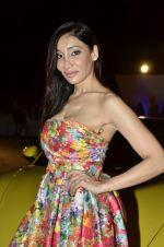 Sofia Hayat at Delna Poonawala fashion show for Amateur Riders Club Porsche polo cup in Mumbai on 23rd March 2013 (17).JPG