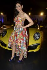 Sofia Hayat at Delna Poonawala fashion show for Amateur Riders Club Porsche polo cup in Mumbai on 23rd March 2013 (18).JPG