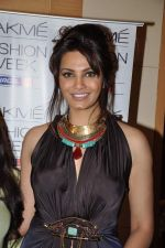 Diana Hayden on Day 3 at Lakme Fashion Week 2013 in Grand Hyatt, Mumbai on 24th March 2013 (99).JPG