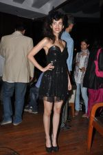 Saba Azad at Nautanki Saala Music Success Bash in Escobar, Bandra, Mumbai on 1st April 2013 (52).JPG