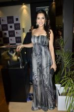 Rashmi Nigam at IIJW Delhi 2013 on 13th April 2013 (140).JPG