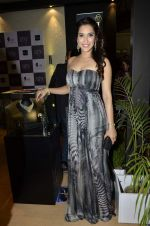 Rashmi Nigam at IIJW Delhi 2013 on 13th April 2013 (141).JPG